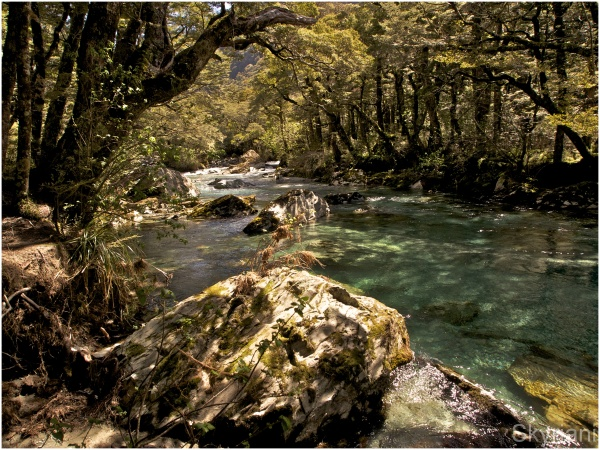 The Routeburn IV