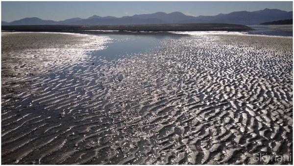 Sand Patterns IV