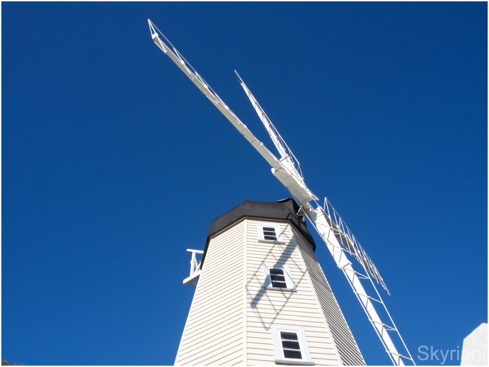 Bush's Windmill