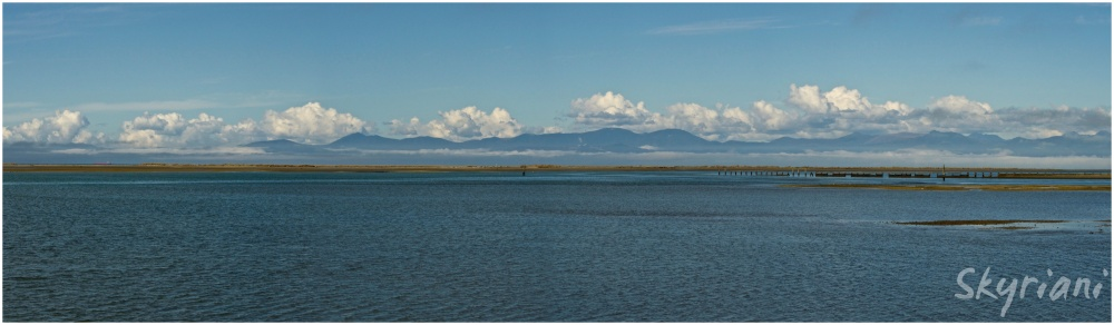 Tasman Bay II