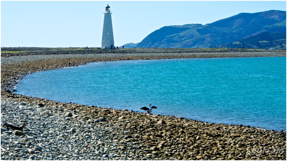 Lighthouse, Boulder Bank and Birdlife