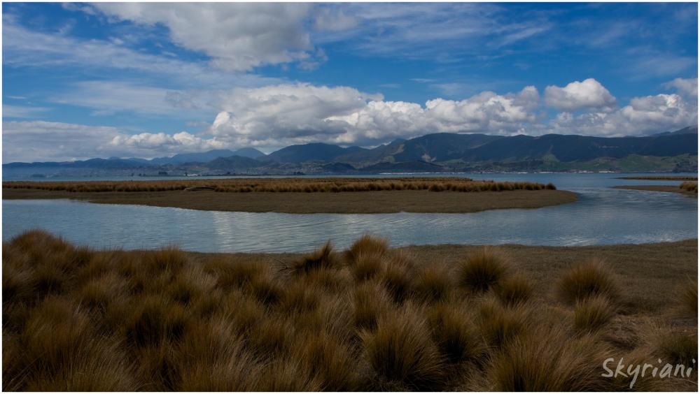 The Waimea Estuary