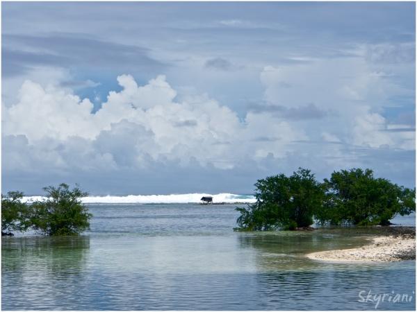 Kosrae Shore