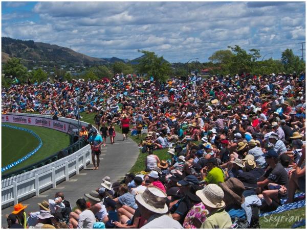 Cricket Crowd