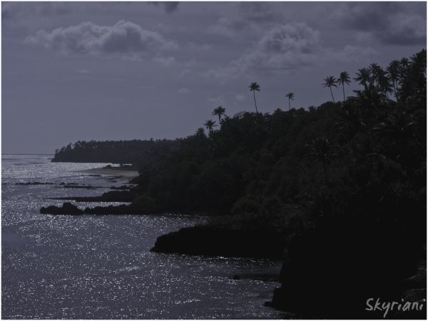 Upolu Coast near To Sua Trench II