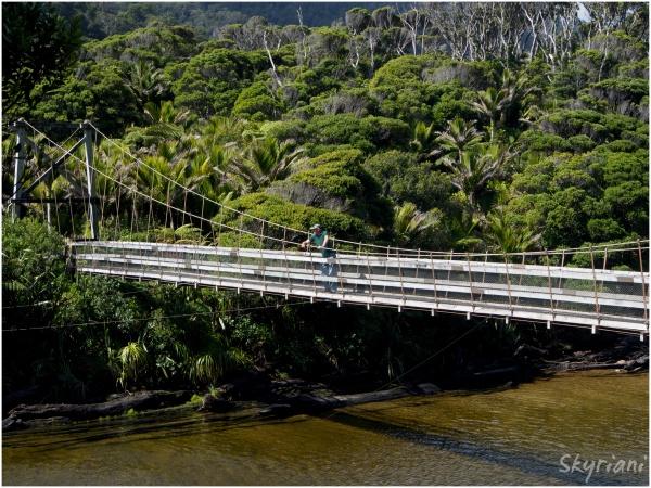 Bridge to the Heaphy