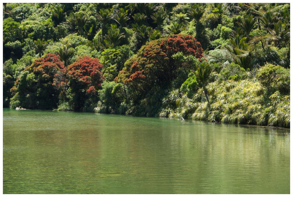 Punakaiki River