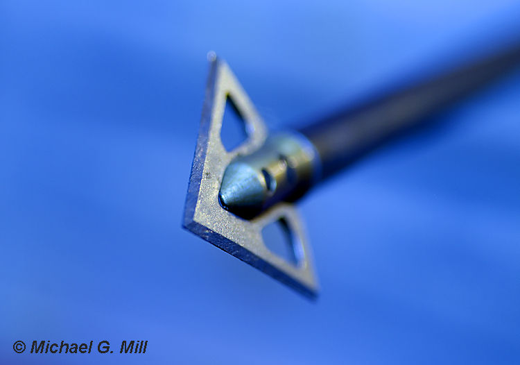 Shallow depth of field image of an arrow flying.