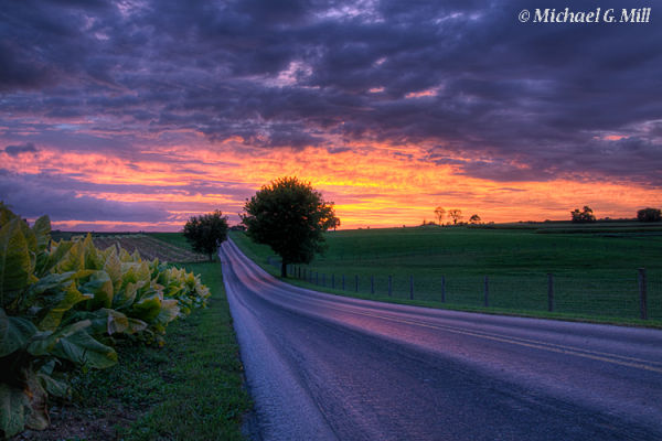 Beautiful sunset on a lonely country road