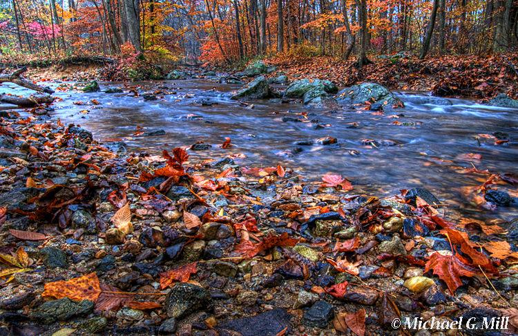 Autumn At Indian Run Creek