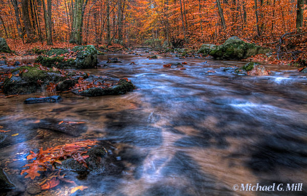 Indian Run Creek Autumn