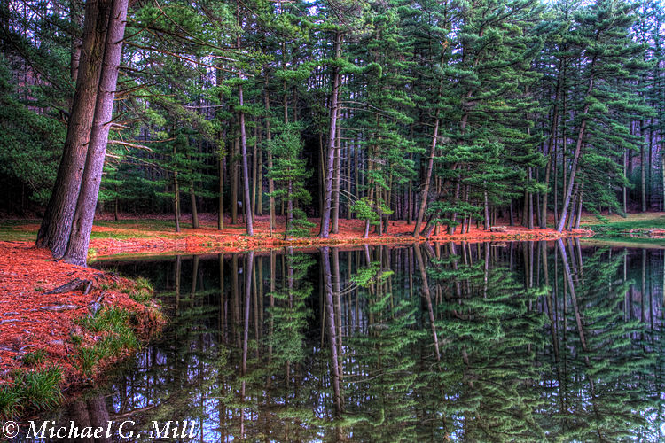 Hay Creek Shoreline Reflections
