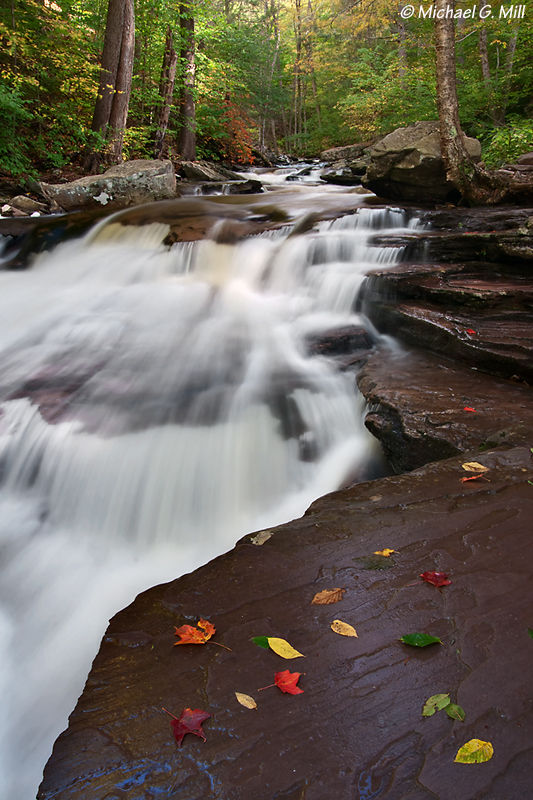 Kitchen Creek, Ricketts Glen State Park