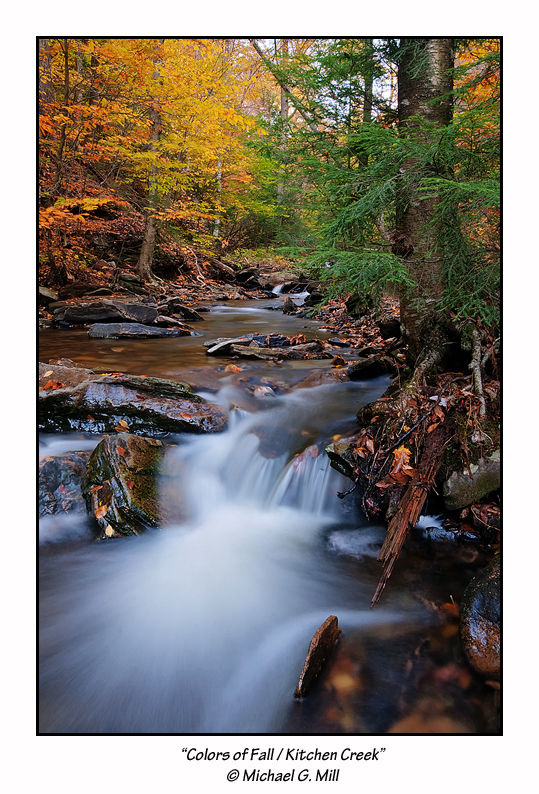 Colors of Fall / Kitchen Creek