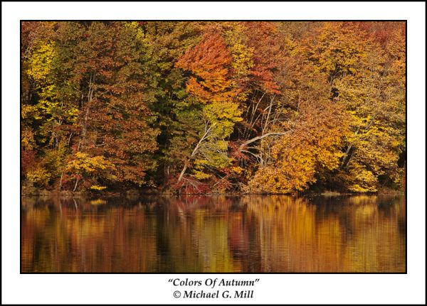 Colors Of Autumn