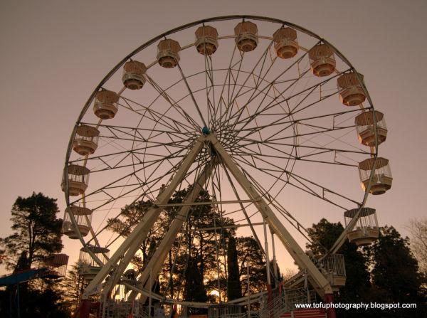 Ferris wheel at Floriade