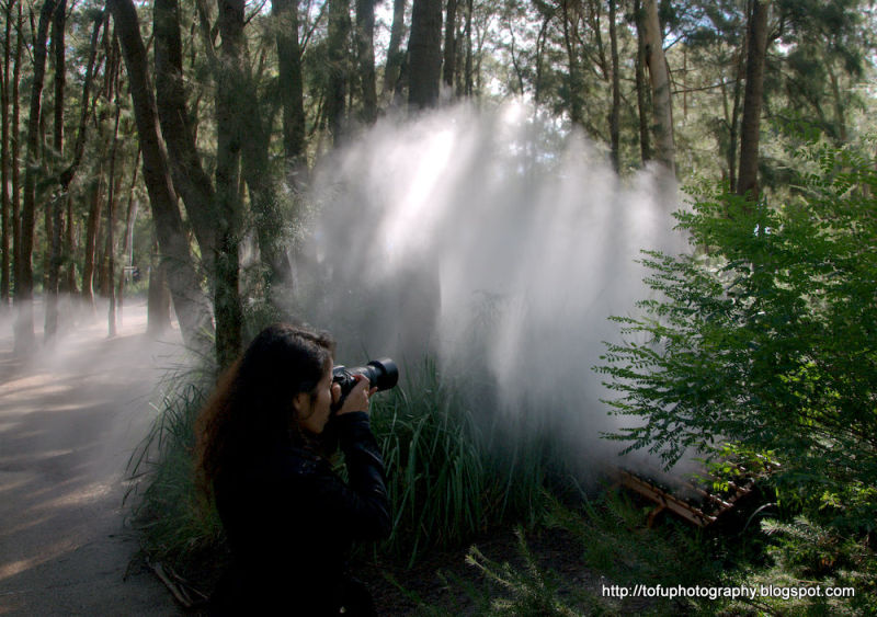Photographing fog