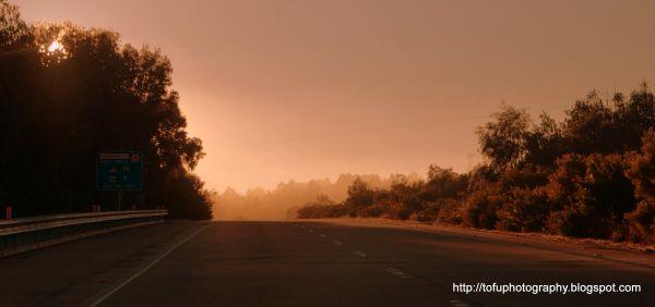 Fog light