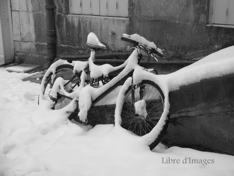 rider of the snow