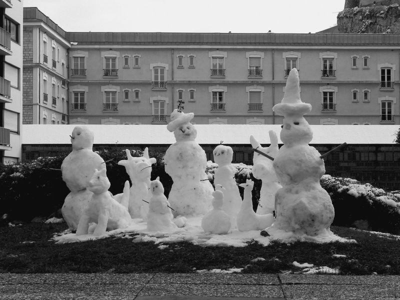 nos amis de neige / snow friends