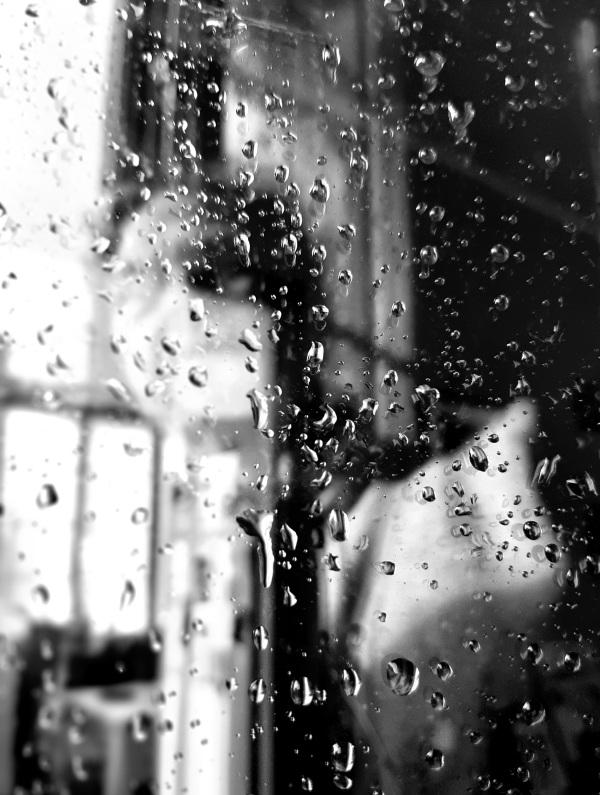 Rainy Self portrait