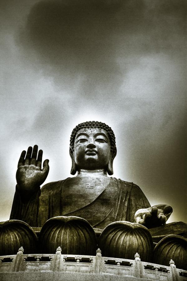 D Budha