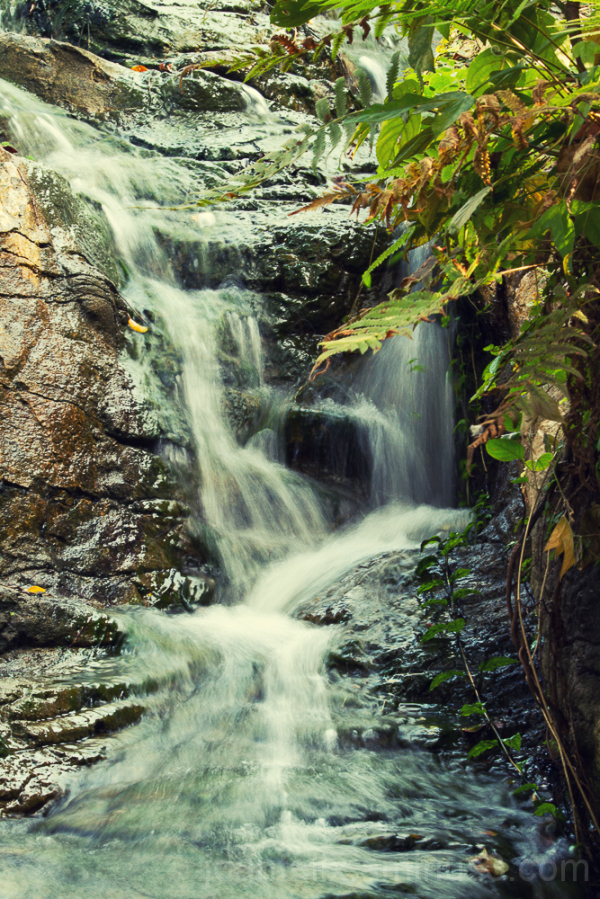 Small waterfall in the state parks Hongkong.