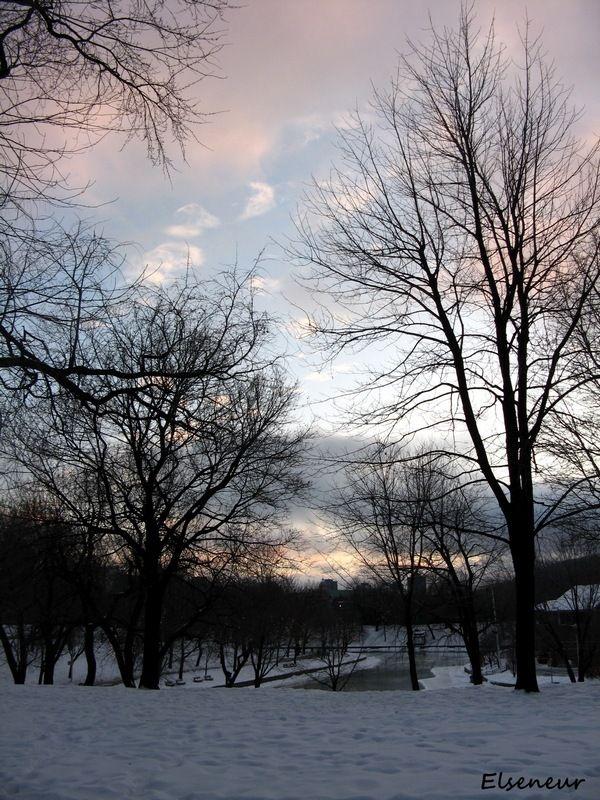 Promenade du soir au Parc Lafontaine