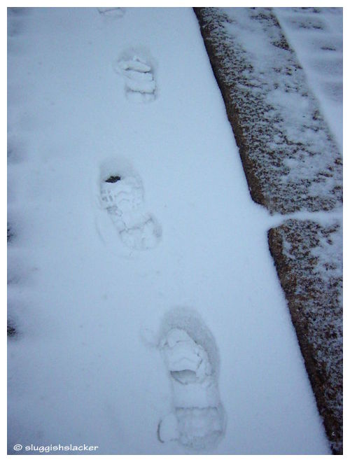 Winter - footsteps