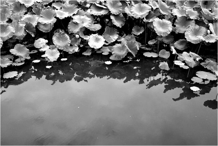 in early autumn (II) 1/2
