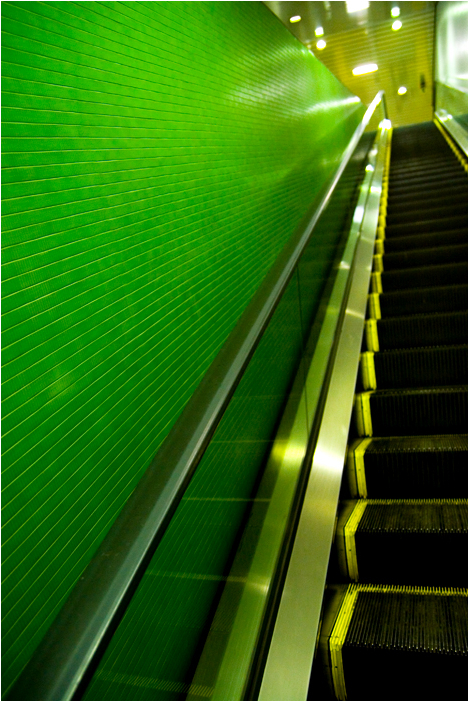 into green