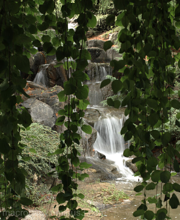 Infinite Nature of Water: Part 1