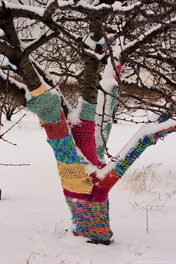 Crazy Tree Sweaters