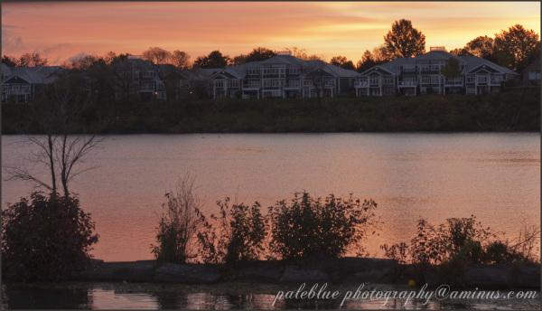 Morning on Henley