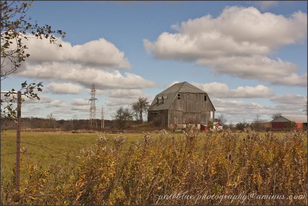 Ontario Barns I