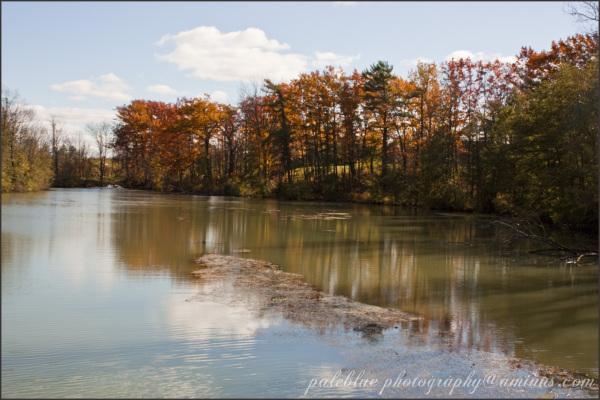 Reflecting Autumn Days