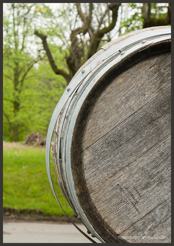 Barrel in Spring