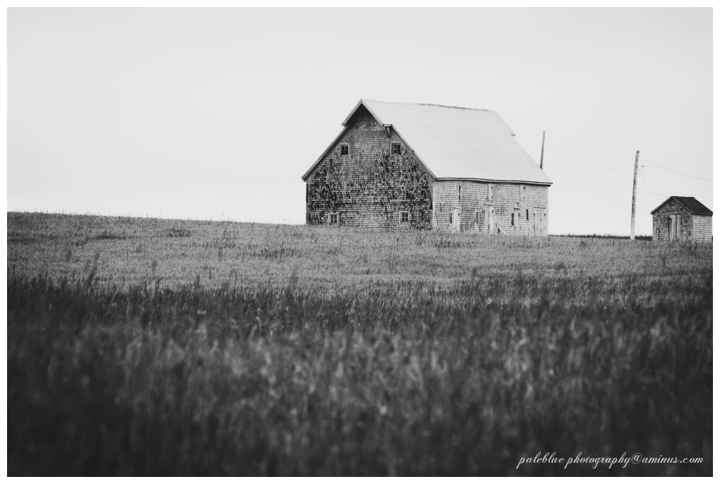 Barn and Horizon in B&W