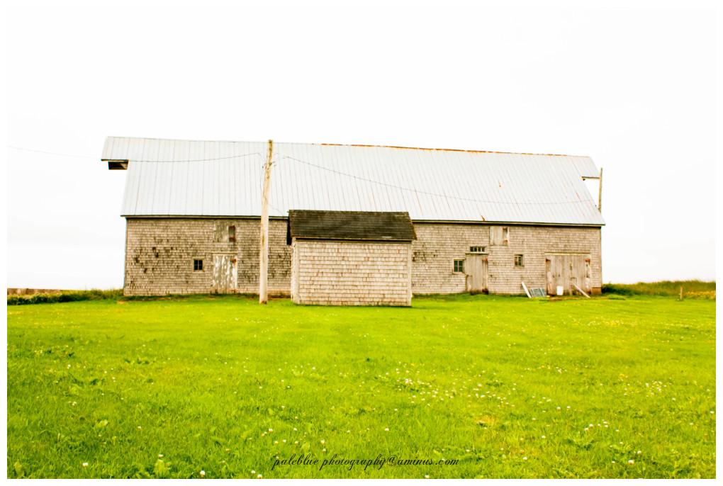 Barn in Long View