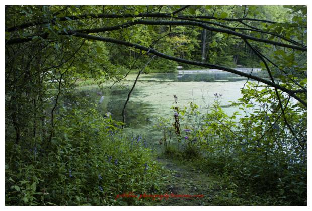 St. John Conservation, Ontario