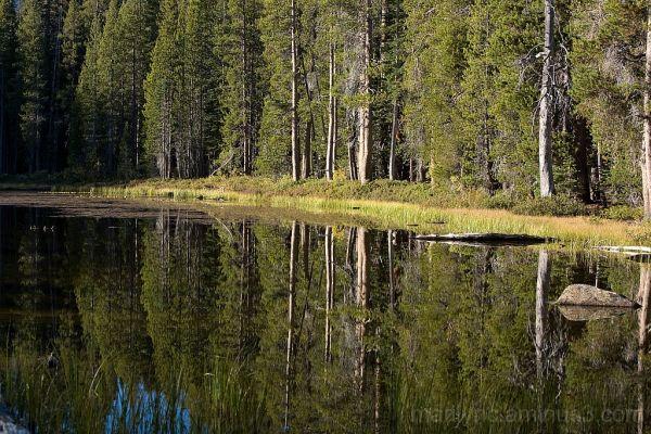 Siesa lake early morning reflection