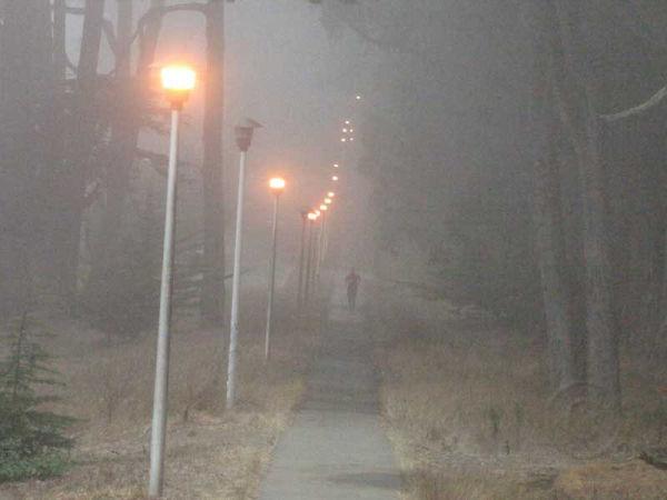 Path With Lights