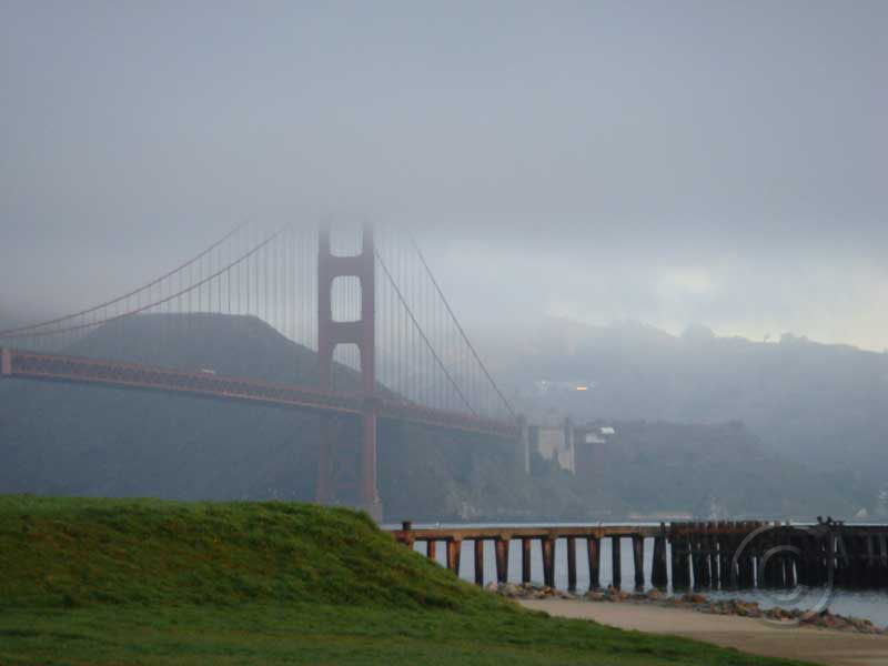 North Tower Fog
