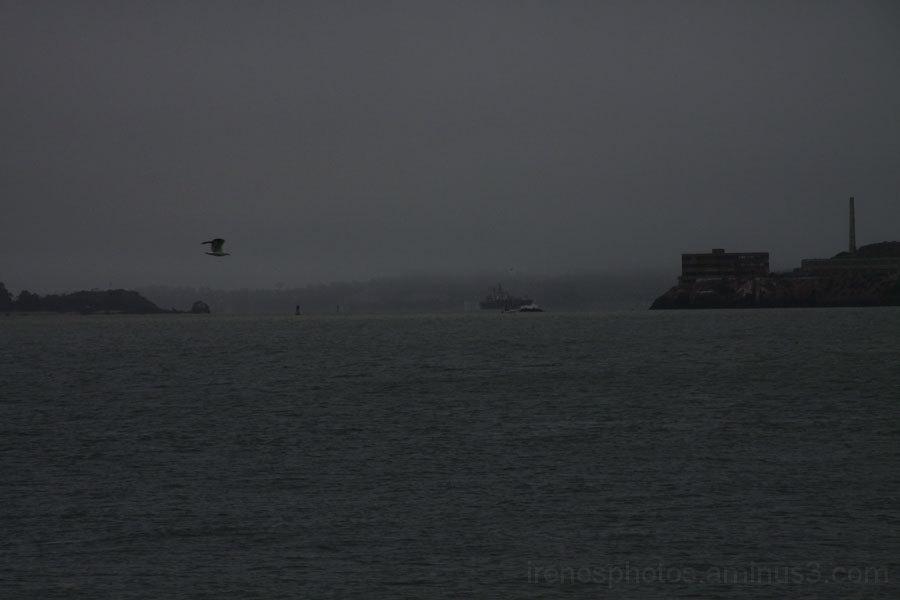 More Gloom
