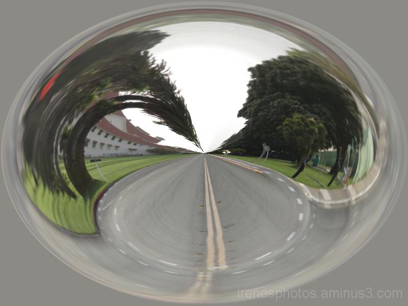 Road in The Presidio
