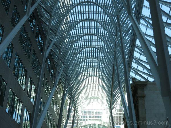 Toronto Trip #4