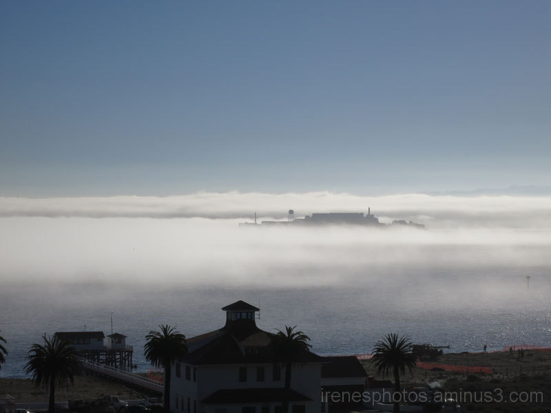 Fog Surrounds Alcatraz