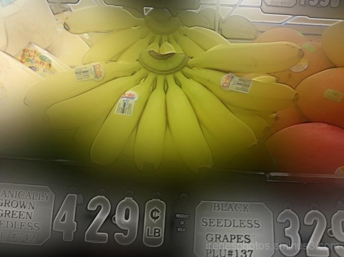Dreamy Bananas