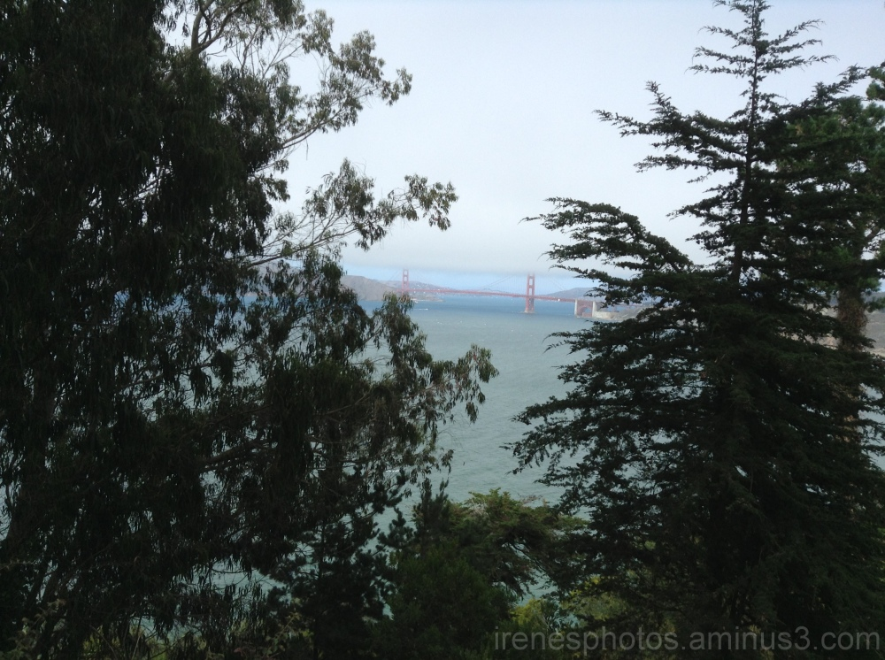 Glimpse of Golden Gate Bridge
