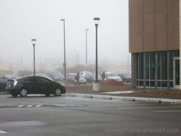 Foggy at City College